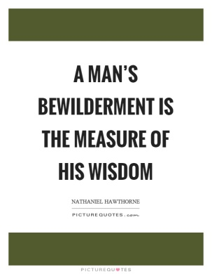 a-mans-bewilderment-is-the-measure-of-his-wisdom-quote-1