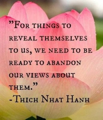 thich-nhat-hanh-quote-beginners-mind.jpg